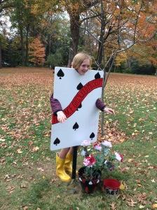 Wonderland Bookmakers - Maddie